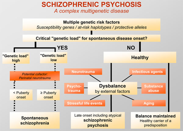 the characteristics causation and model treatment of schizophrenia a mental disorder Research report diabetes mellitus in people with schizophrenia, bipolar disorder and major depressive disorder: a systematic review and large scale meta-analysis.
